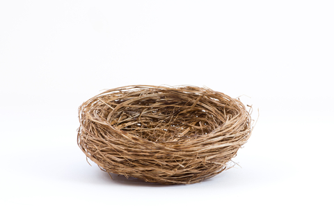 http://www.dreamstime.com/royalty-free-stock-image-empty-bird-nest-white-background-studio-shot-isolated-image41974836